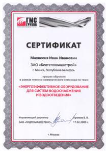 """Свидетельство сервисного центра ЗАО """"ГМС-насосы"""""""